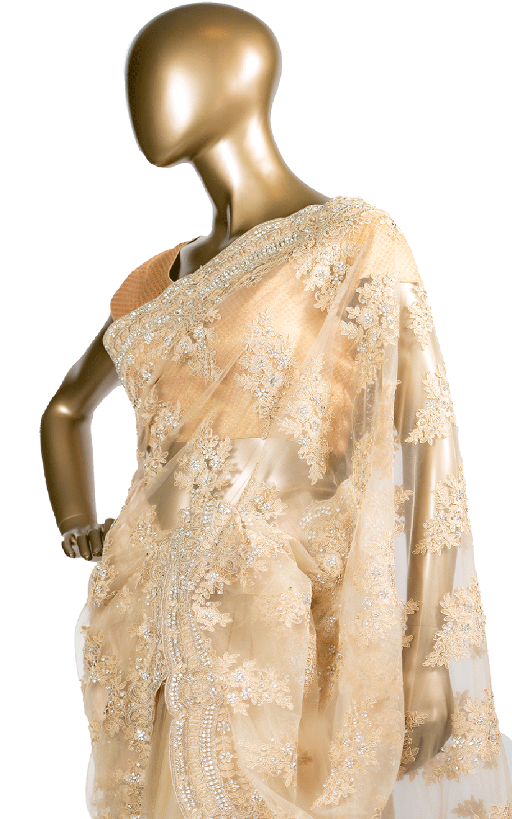 Gold Thread Pearl and Stone Embroidery Saree