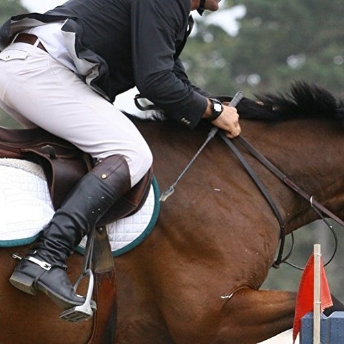 Intrepid International Equestrian Jump Bat