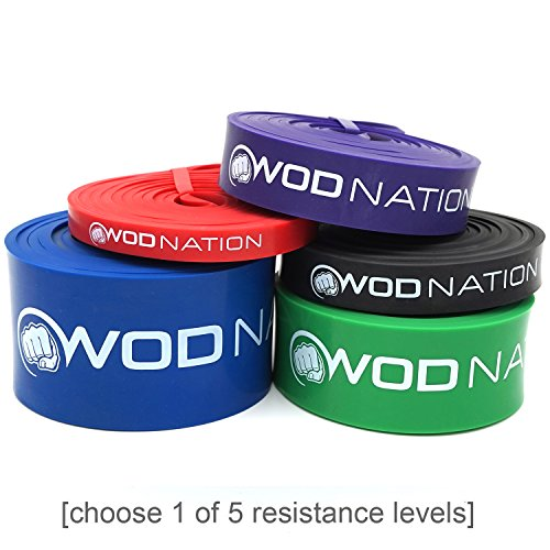 WOD Nation Pull up Assistance Bands Best for Pullup Assist, Chin Ups, Resistance Band Exercise, Stretch, Mobility Work & Serious Fitness - Single Band 41 inch Straps | 1 Blue Band 65-175 lbs