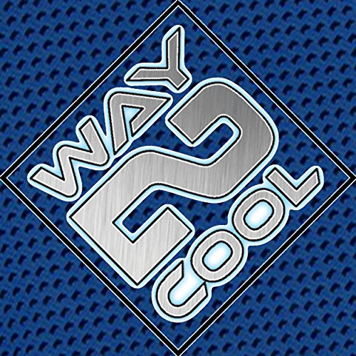 Way 2 Cool Mesh Cooling Towel on The Market!