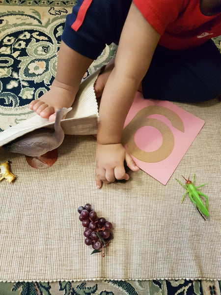 Montessori Letter Sounds with S.