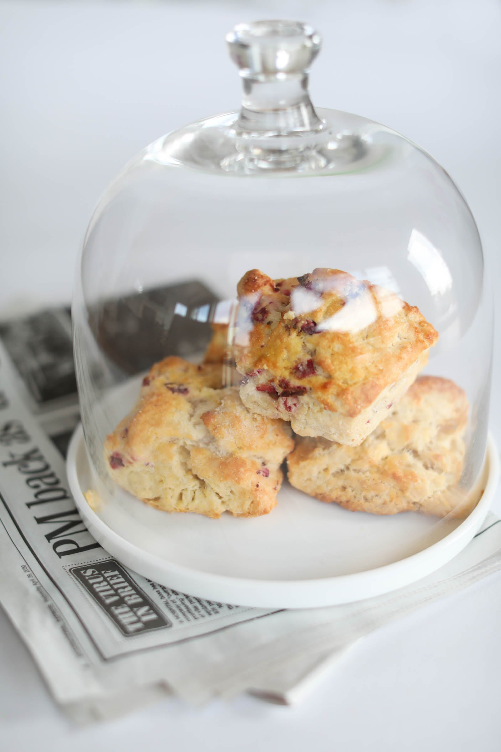 Scone Cranberry Orange