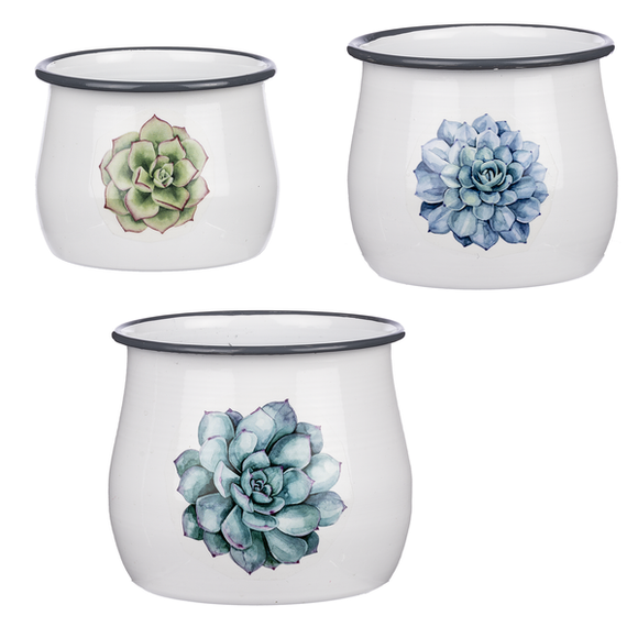 Enamel Succulent Mini Planter (3 pc. set)