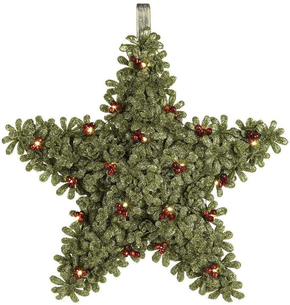 Light Up Hanging Mistletoe Star