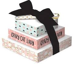 'Crazy Cat Lady' Notepad Tower