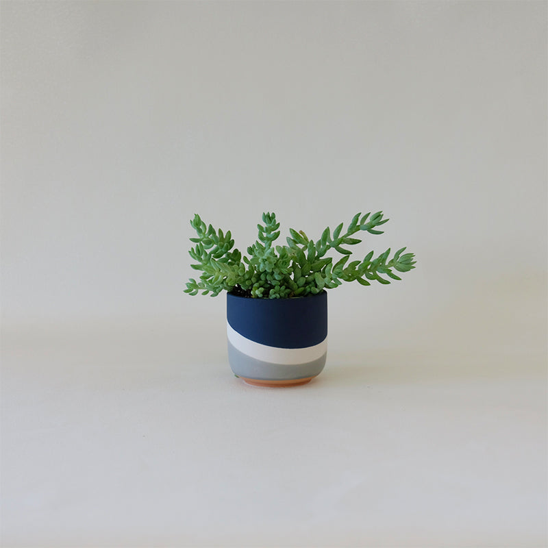 Colorway Cachepot Navy