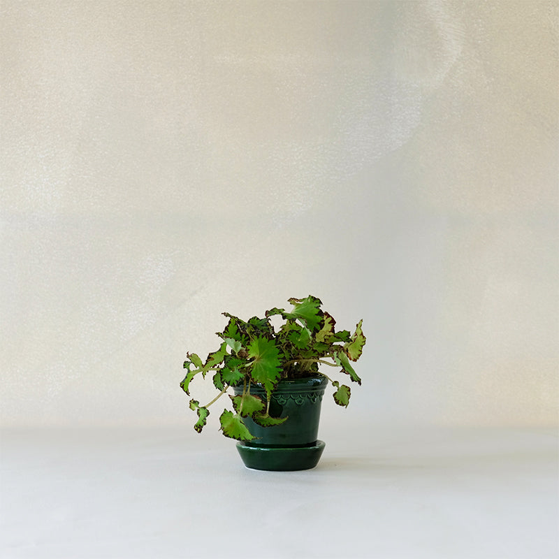 Copenhagen Planter Emerald Green