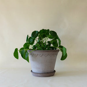 Copenhagen Planter Grey