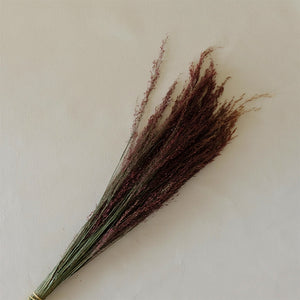 Ruby Silk Grass Bunch