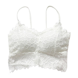 Sexy Bra Lace Bralette Lingerie Underwear Wireless Padded Seamless