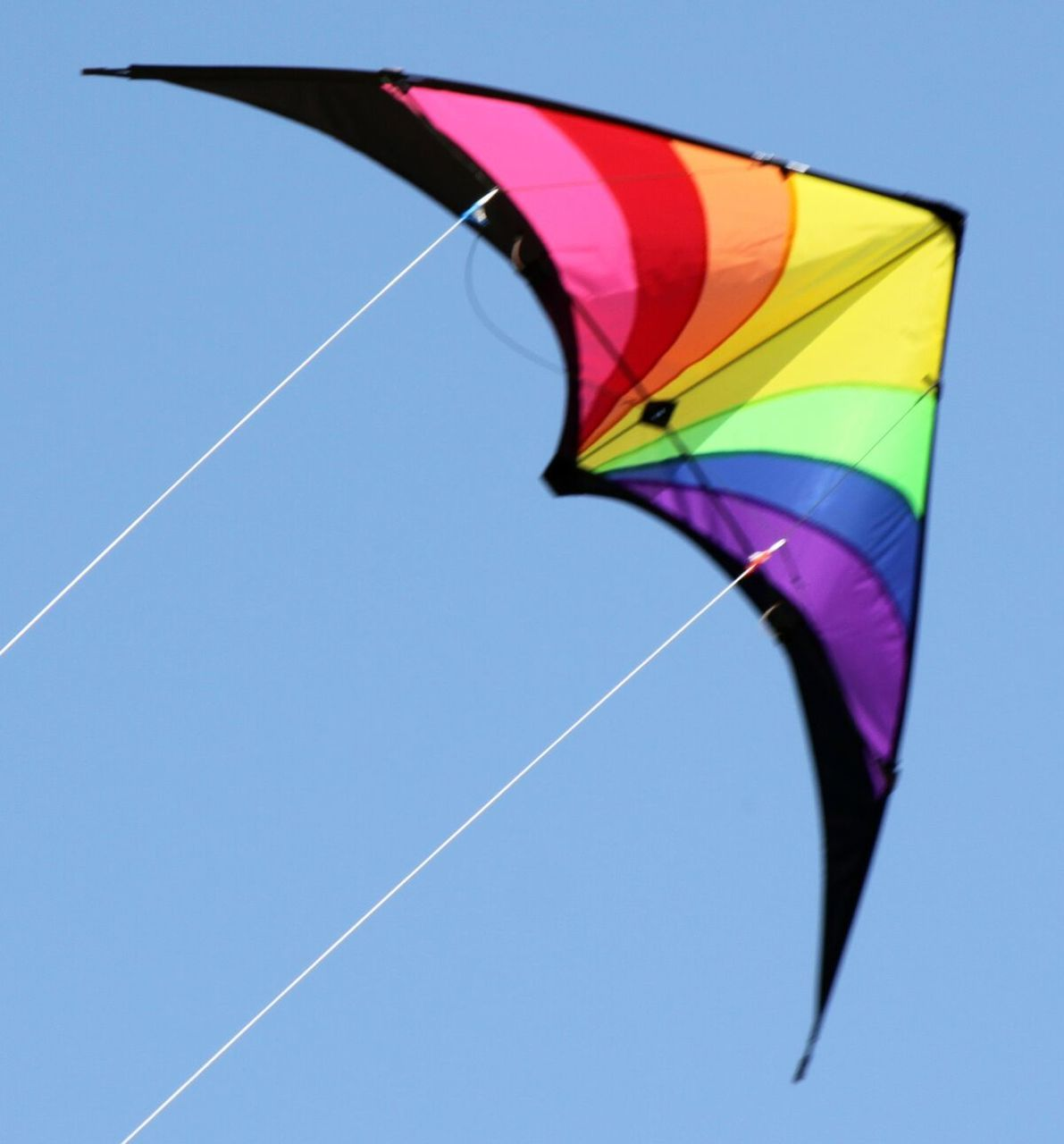 PRISM KITE SWEPT WING 1.37M WINGSPAN