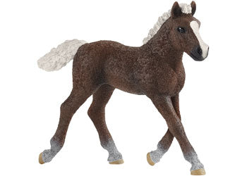 SCHLEICH - BLACK FOREST FOAL | SCHLEICH | Toyworld Frankston