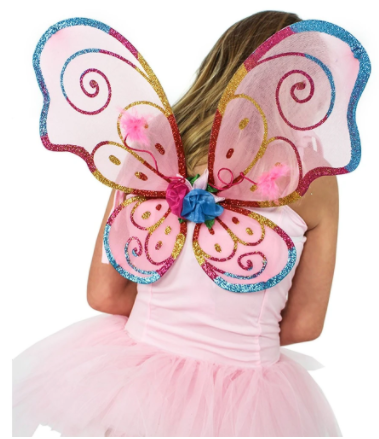 FAIRY GIRLS BLOSSOM WINGS SMALL RAINBOW