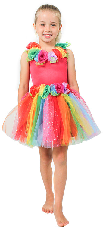 ENCHANTING FAIRY DRESS RAINBOW - SMALL