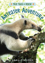Load image into Gallery viewer, Anteater Adventure (True Tales of Rescue)