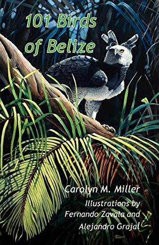 101 Birds of Belize by Carolyn Miller