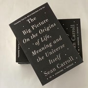 Sean Carroll - The Big Picture