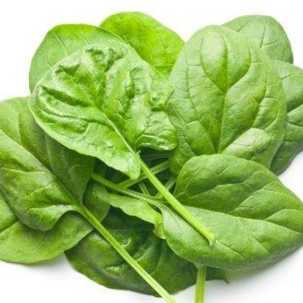 Baby Spinach leaves 160g