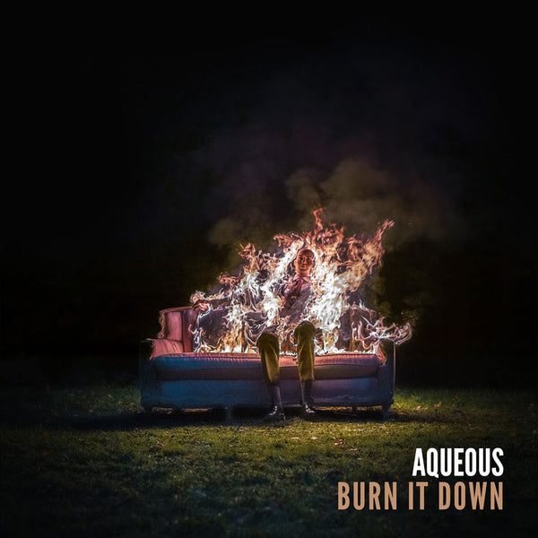 'Burn It Down' Vinyl