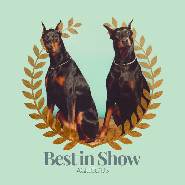 'Best in Show' EP CD