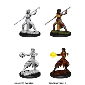 DUNGEONS AND DRAGONS: NOLZUR'S MARVELOUS UNPAINTED MINIATURES -W10-FEMALE HALFELF MONK