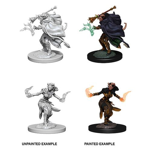 DUNGEONS AND DRAGONS: NOLZUR'S MARVELOUS UNPAINTED MINIATURES -W6-FEMALE TIEFLING WARLOCK