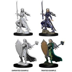 DUNGEONS AND DRAGONS: NOLZUR'S MARVELOUS UNPAINTED MINIATURES -W9-FEMALE ELF PALADIN