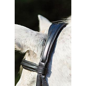 Shires Louisville Dressage Bridle