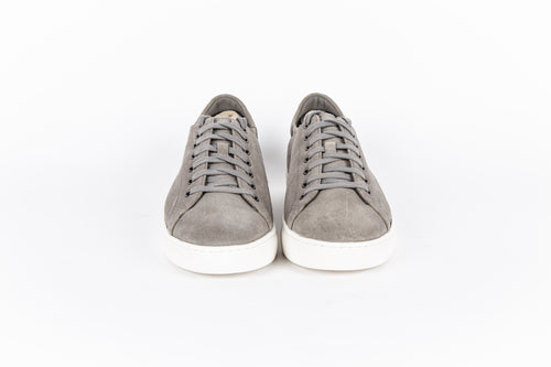 Alder (Perforated) Sneaker
