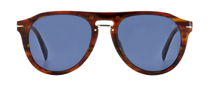 DB 7032/G/CS - Brown Horn - Grey Polarized