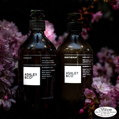 Ashley&CO Handwash&Bodylotion Set