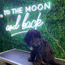 To The Moon And Back Led Sign - Marvellous Neon