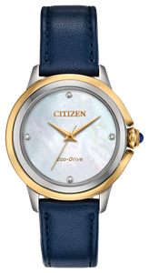 Ladies Stainless Steel Yellow and White Two Tone Citizen Eco-Drive Watch