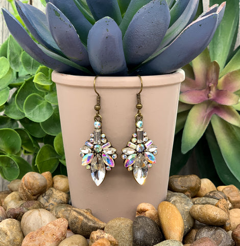 Transparent Glass Dried Flower Pendant Necklace Dangle Earrings Jewelry Set FBB
