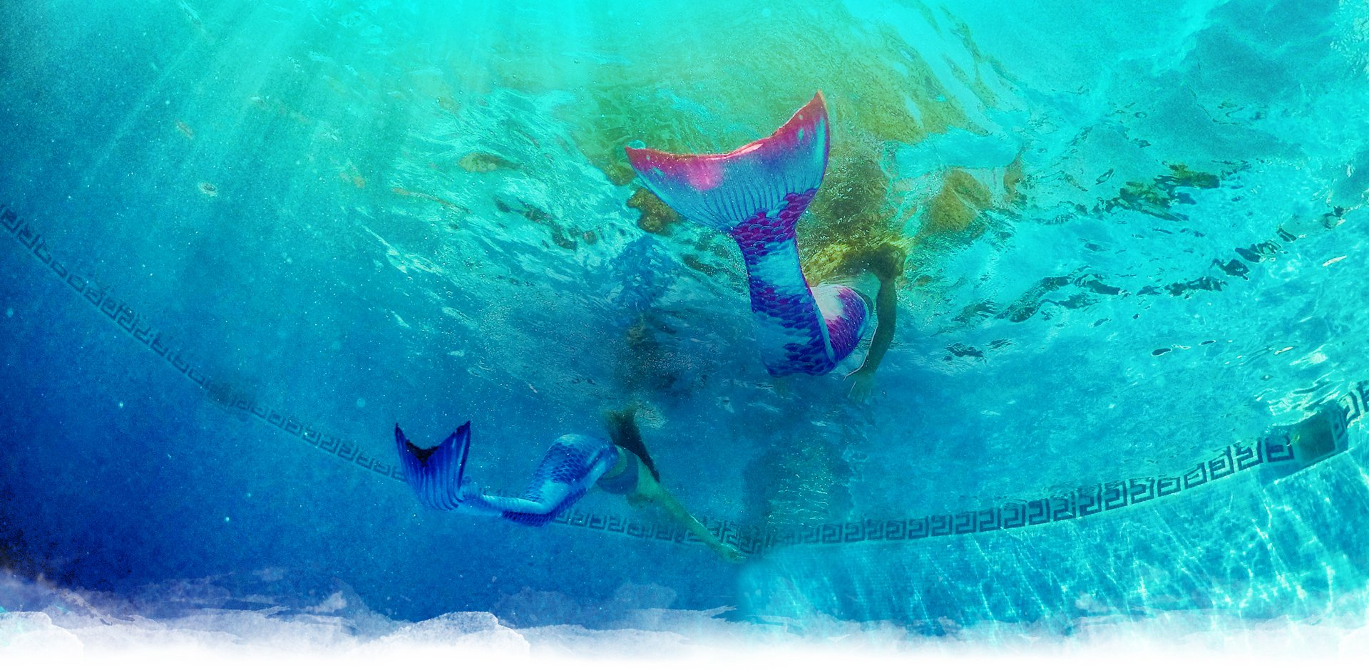 Mermaid Fin, Mermaid Swim and more Frequently Asked Questions