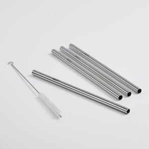 Stainless steel straw set (5 pcs) - dalcinistainless