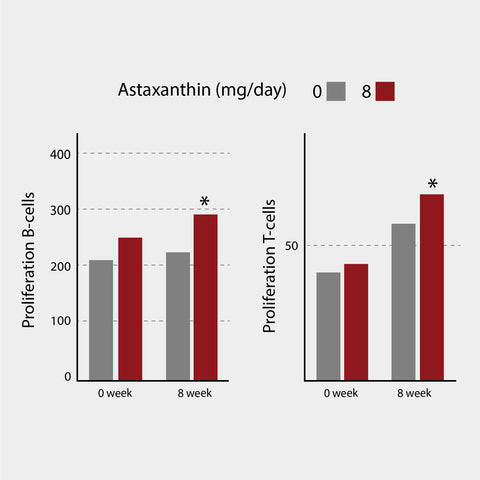 The effect of astaxanthin on immune response was measured in a double blind, randomized study involving 42 subjects. B-cells and T-cells were exposed to high concentrations of mitogens and its capacity to proliferate was measured <sup>1</sup>. (*p<0,05 compared with control)<sup>1</sup>.