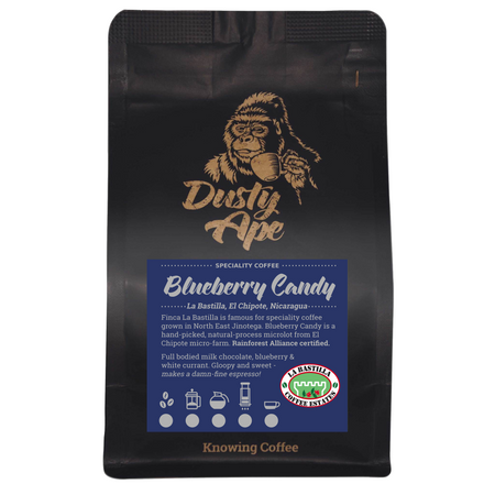 Nicaragua Blueberry Candy
