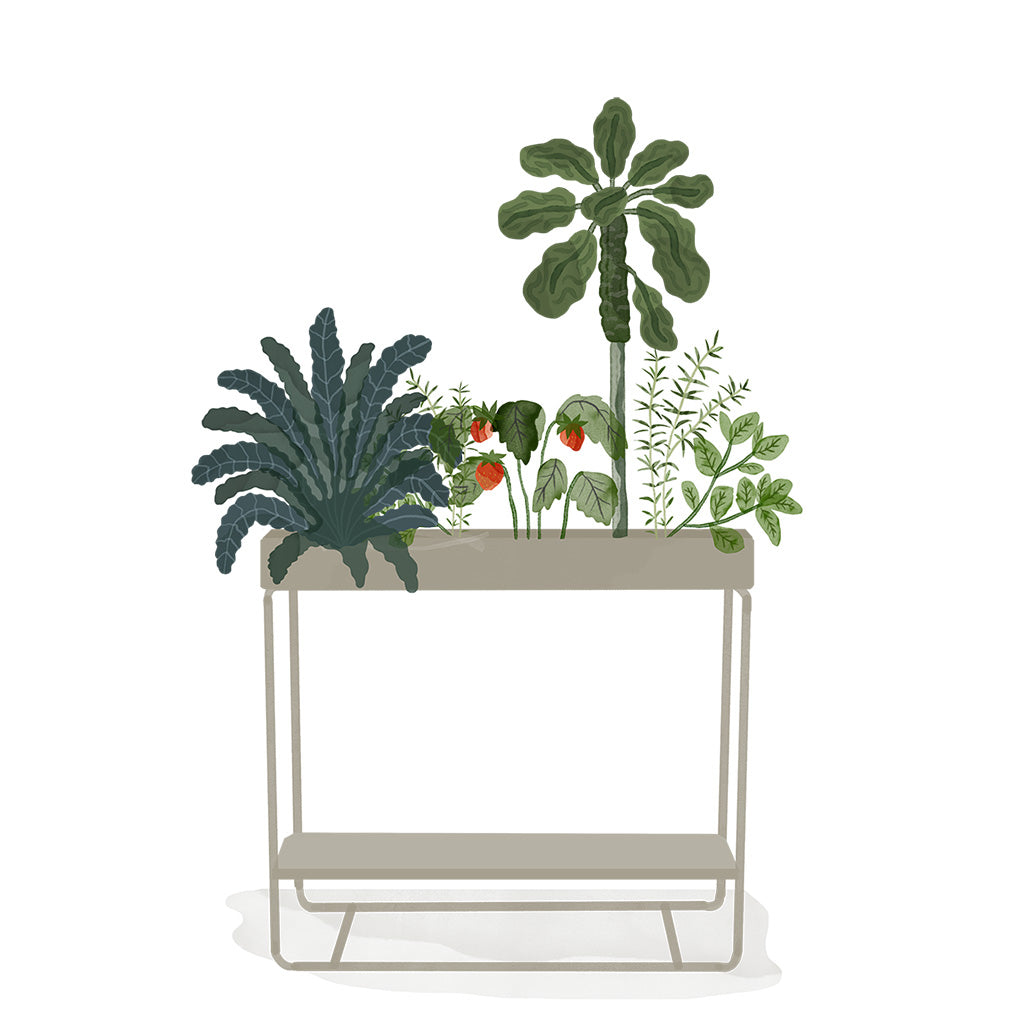 Plant Box 2 levels by Ferm - Happiness in Little Things