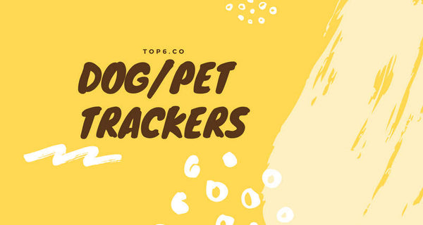 6+ Best Pet/Dog Finders | Track Dogs Wireless/Bluetooth & GPS