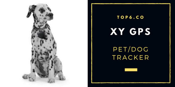 XYGPS Dog Tracker