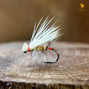 Interview with Dan Kowta a.k.a. @nakashentoflies