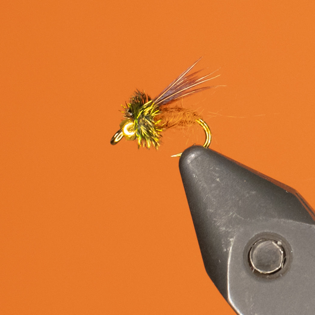 Bead Headed Caddis Pupa
