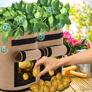 [PROMO 30% OFF] Bag-A-Plant Potato Growing Pouch
