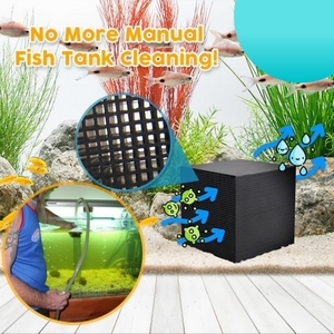 [PROMO 30% OFF] Ecorium Water Purifying Aquarium Cube