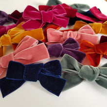 Load image into Gallery viewer, Autumn Velvet Bow Collection