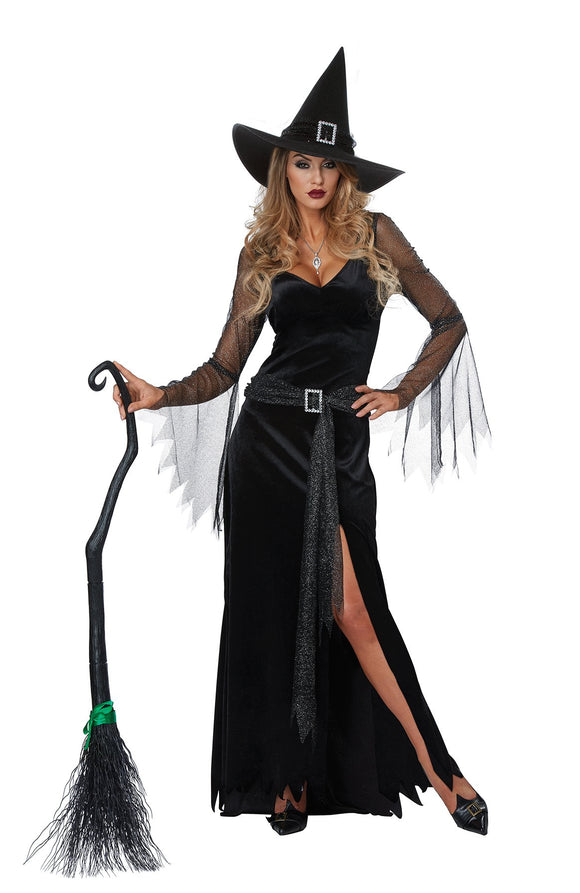 Sheer Sleeved V-Neck Black Witch Dress