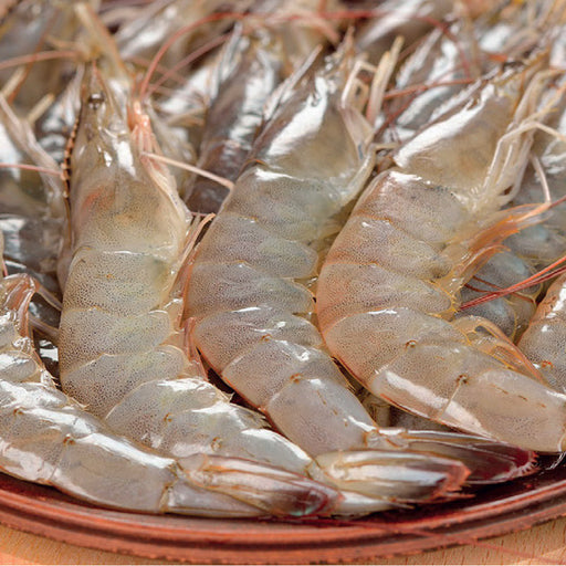 Shrimps 40/50 500Grm approx