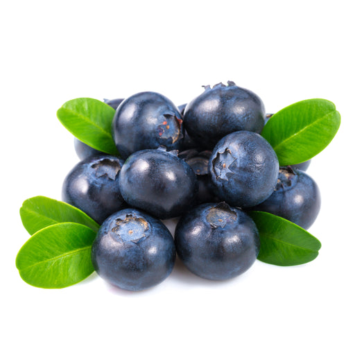 Blueberry Chile per pack