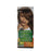 Garnier Hair Color Naturals Dark Ash Blonde